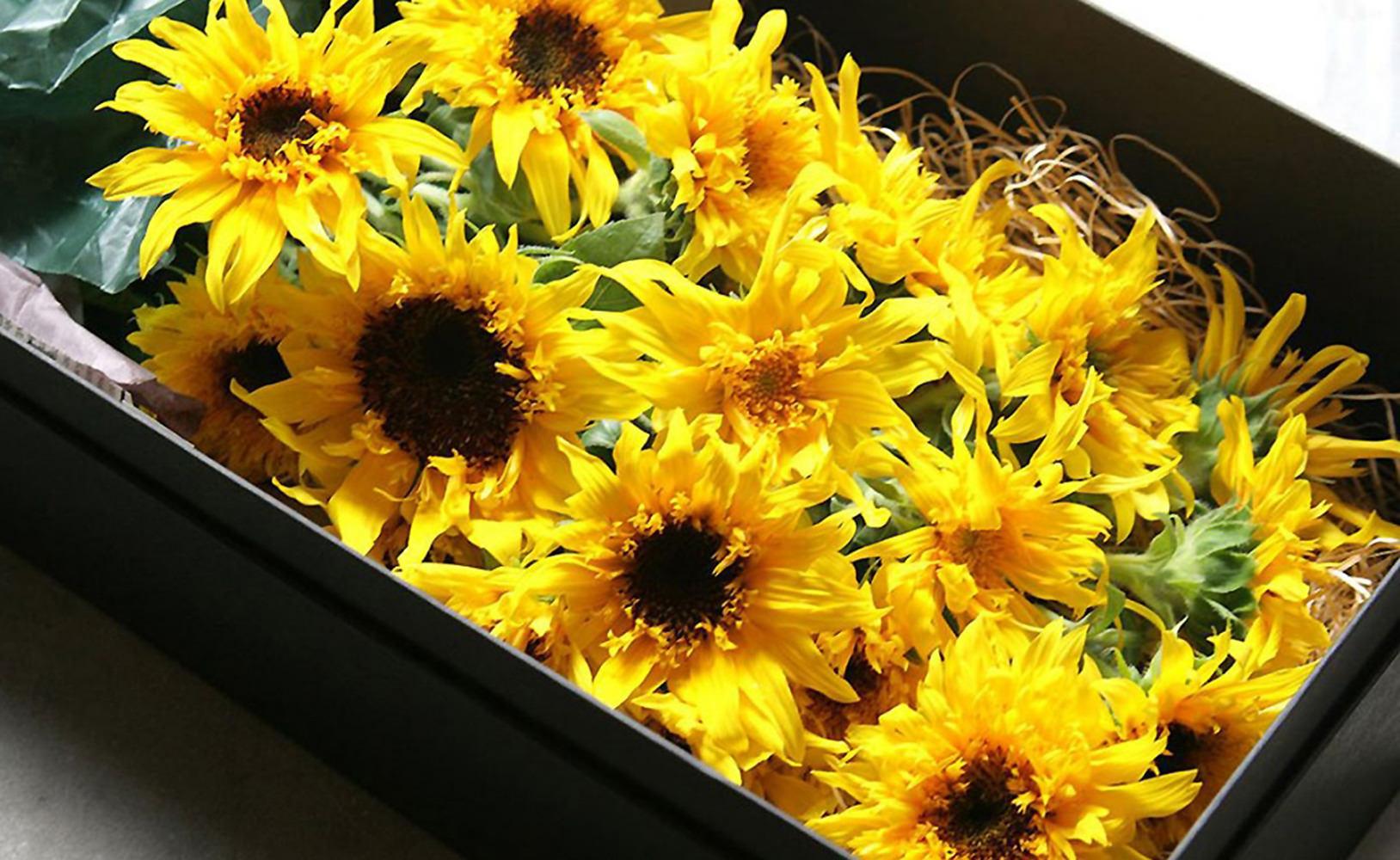 Sunflower Box Bouquet